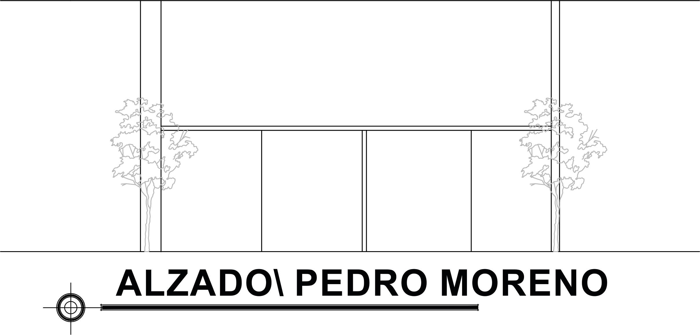 ALZADO PEDRO MORENO