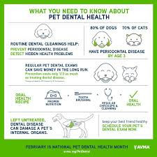 dentalhealthposter.jpg