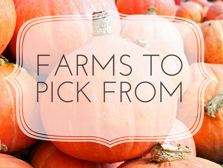 Little Lists: Farms to Pick From