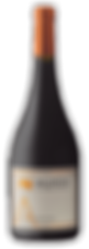 Bottle of wine,munda alfrocheiro winery