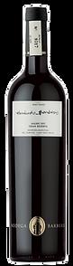 Bottle of wine, humberto barberis gran reserva winery