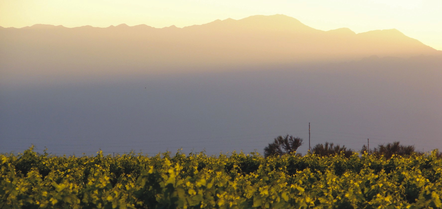 Valle de La Puerta Winery