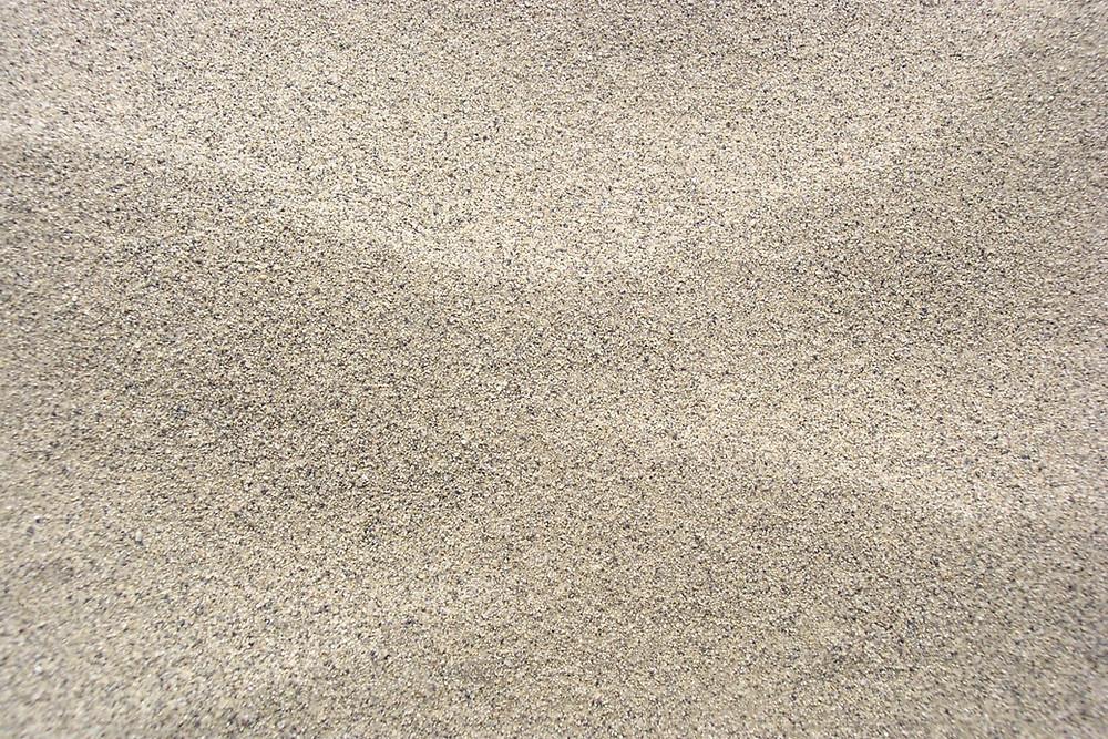 L'autruche aime mettre sa tête dans le sable...