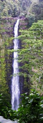 Akaka Falls 1.jpg