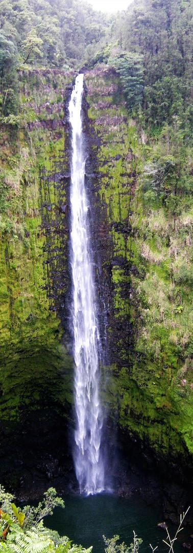 Akaka Falls 2.JPG