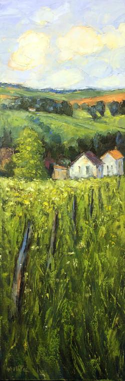 Belgian Greenery