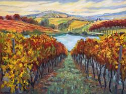 Into Tuscan Vines