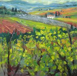 Vines, Toscana