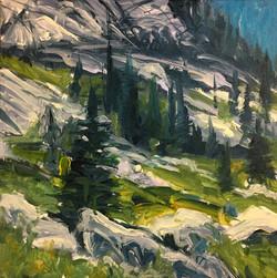 Hike View, Glacier N.P.