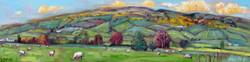 Donegal Vista