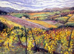 Heart of Tuscany