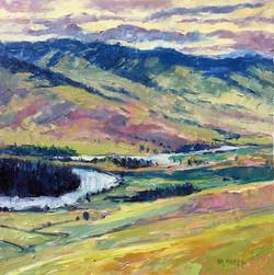 Flathead River View