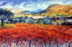 Provence in Autumn II