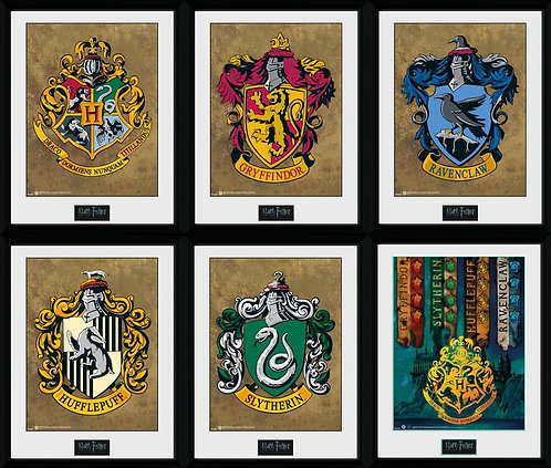 """Harry Potter -12"""" by 16"""" collectors framed art"""