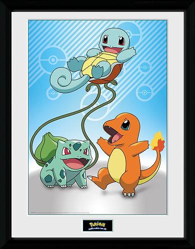 Pokemon -Framed Collectors prints