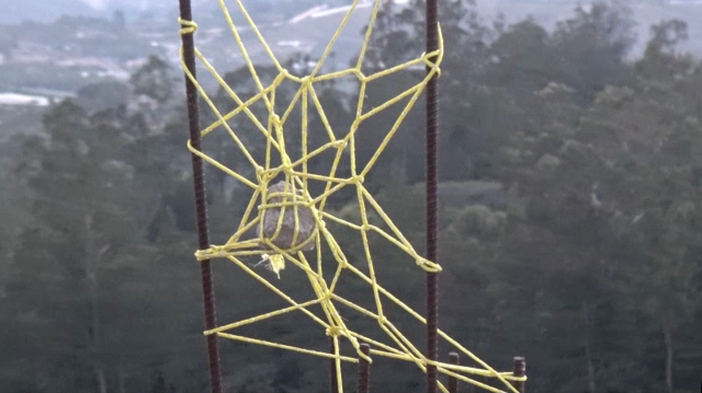 Still del video Piedra en la telaraña