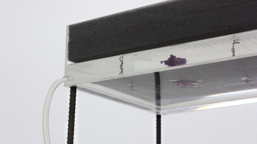 Caja con relieves