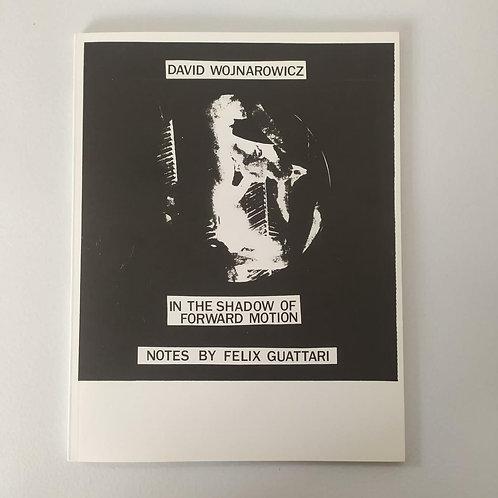 In the Shadow of Forward Motion - David Wojnarowicz