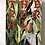Thumbnail: The Rural - MIT Press/Whitechapel