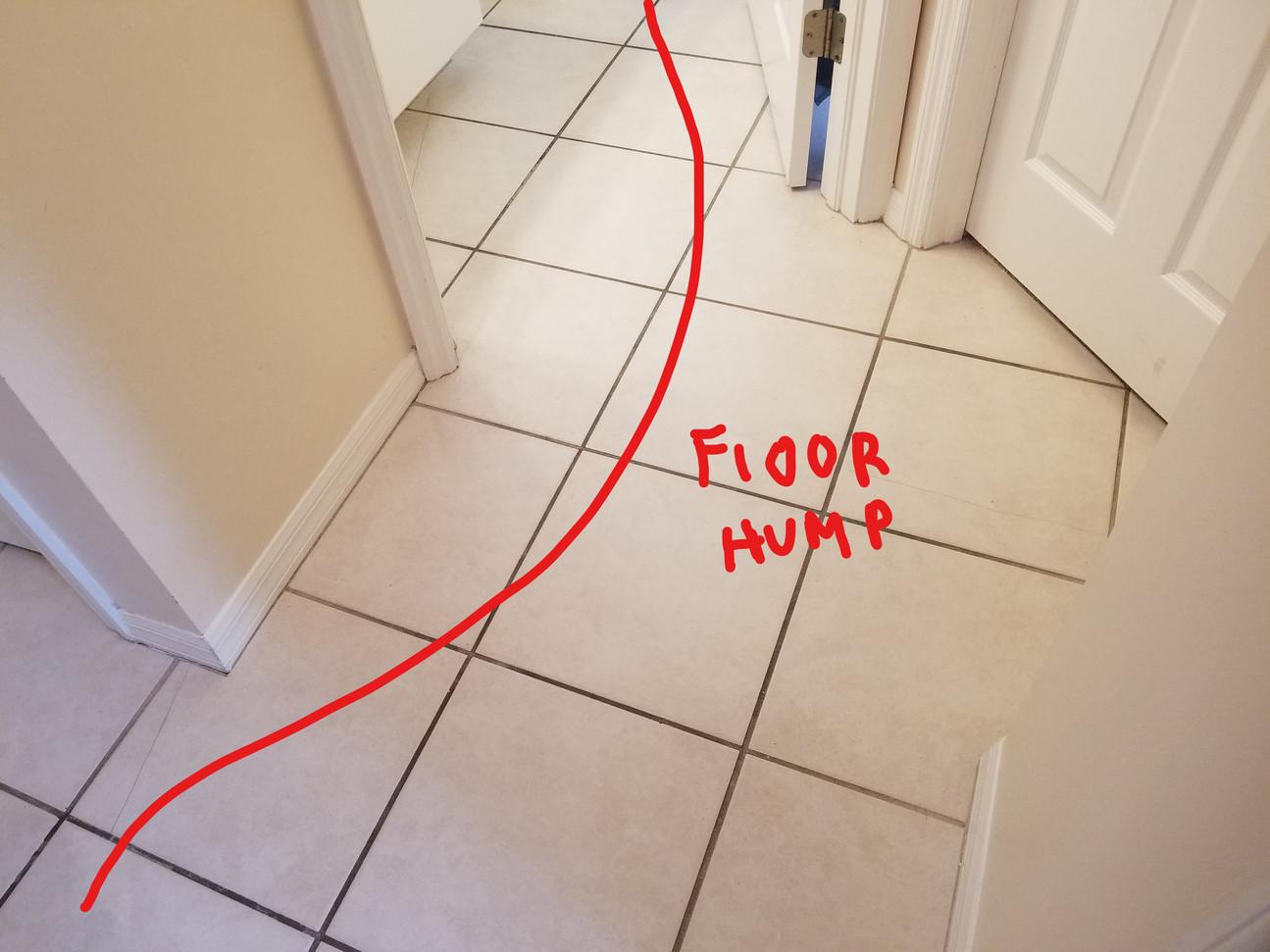 Floor Hump.jpg