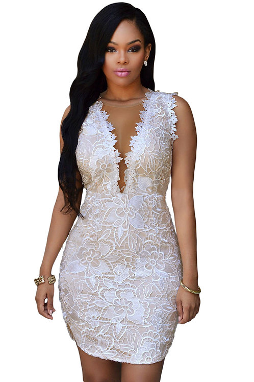 Lace Nude Mesh Accent Dress