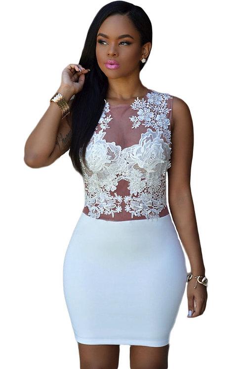 Sizzling Floral Lace Bodice Mini Club Dress
