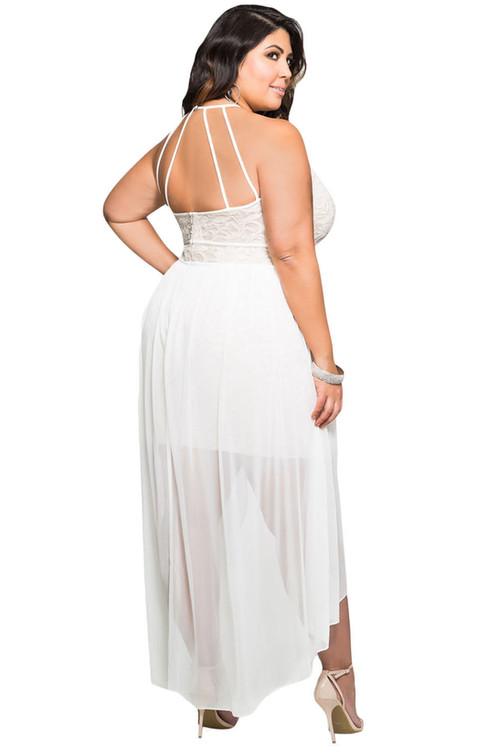 Stylish Lace Special Occasion Plus Size Dress