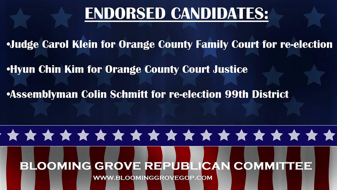 2020 endorsed.jpg