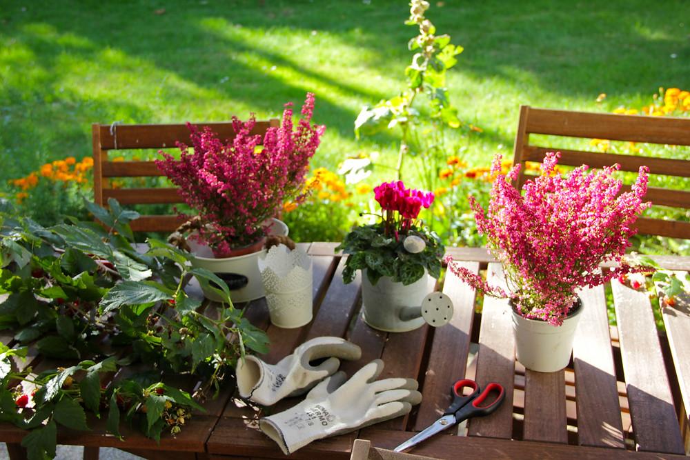 Herbstliches Blumen-Arrangement