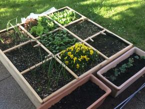 Quadratgarten