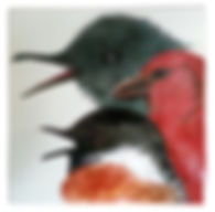 les 3 oiseaux.jpg
