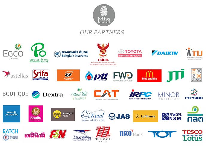 Missconsult partner banner.png