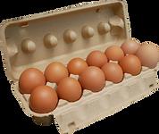 雞蛋.png