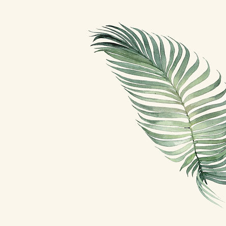 palme_edited.jpg