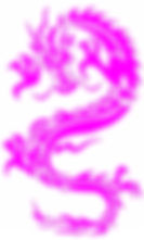 9397062_213436554380_2_edited_edited.jpg