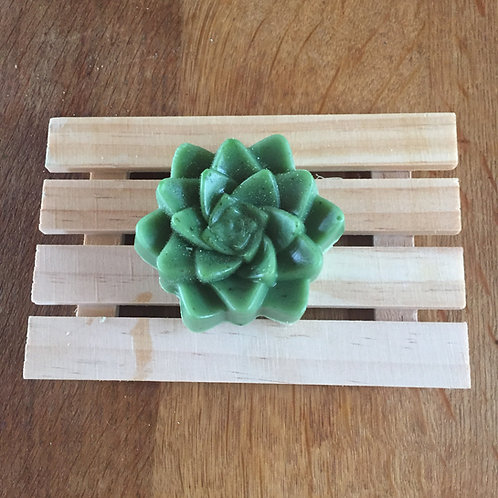 Serenity Succulent soap and deck