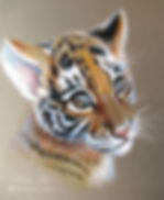 Tiger Cab.JPG