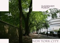 guggenheimmuseumnewyork