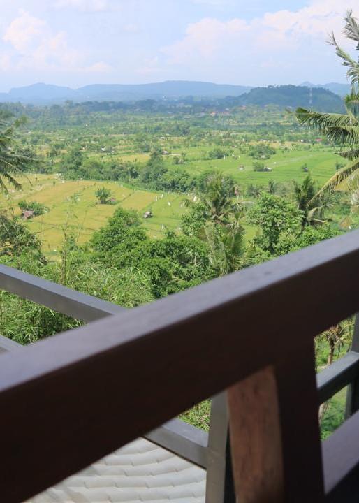 Gazebo view.