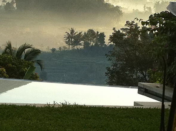 Swimming pool in the morning mist