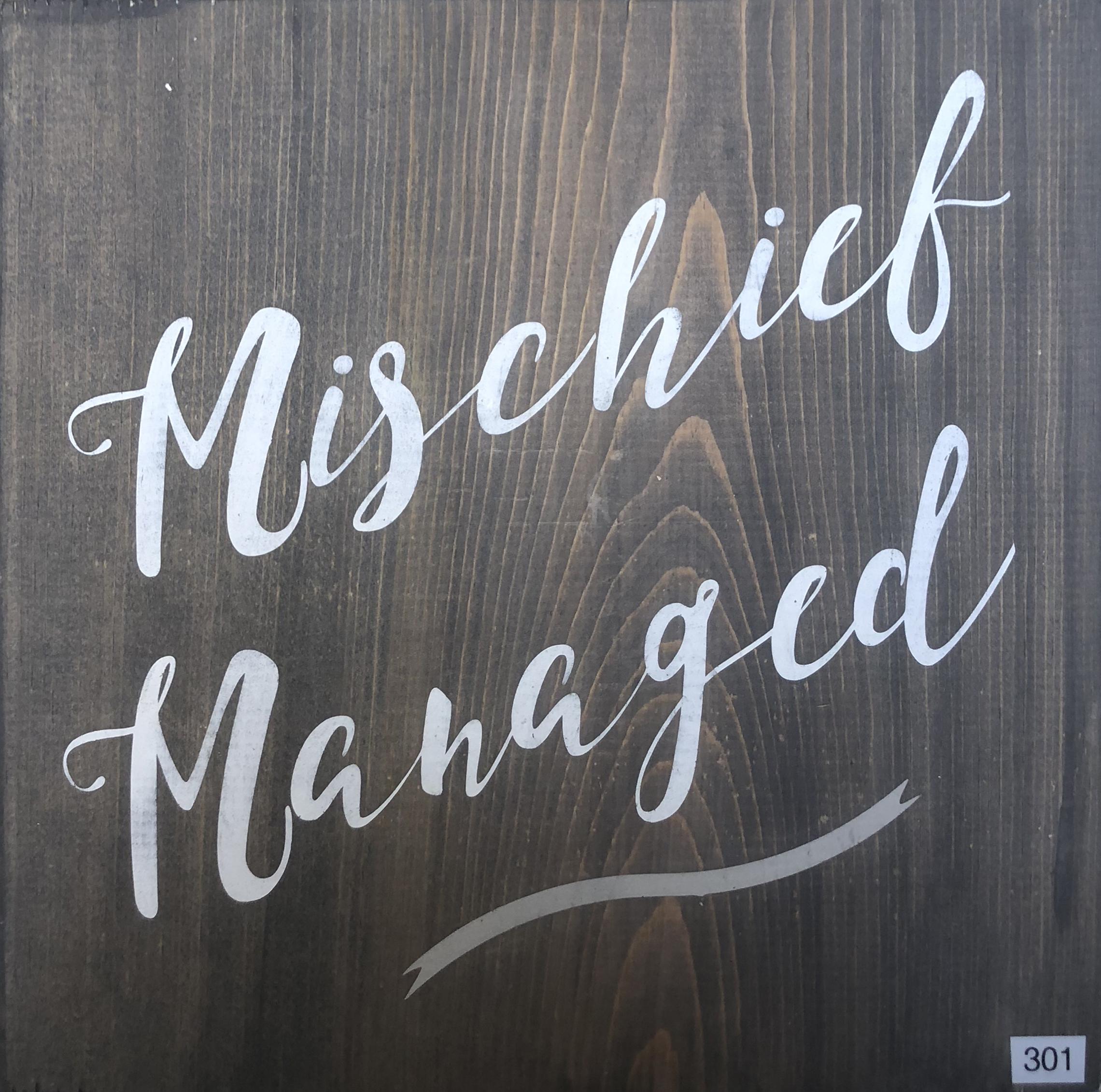 #301 Mischief Managed