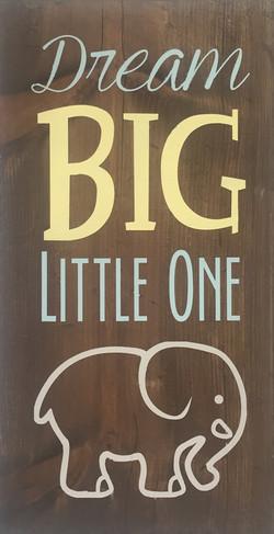 #72 Dream Big Little One