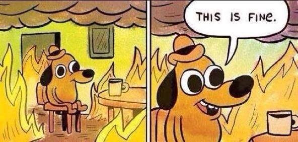 This is fine.jpg