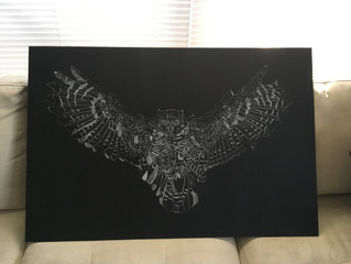 Here is my latest work in progress.  Great Horned Owl!