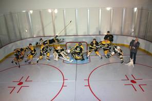 Boston Bruins.jpg