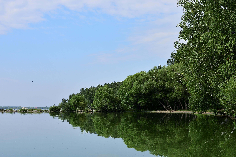 Пикантный берег