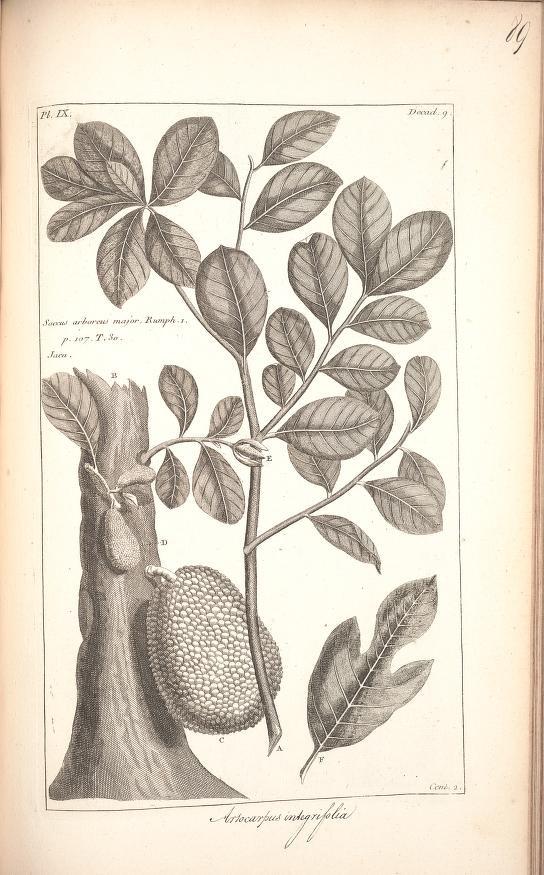 Histoire Universelle, Vol. 2, Chap 9, Paris: Brunet,1775-1778