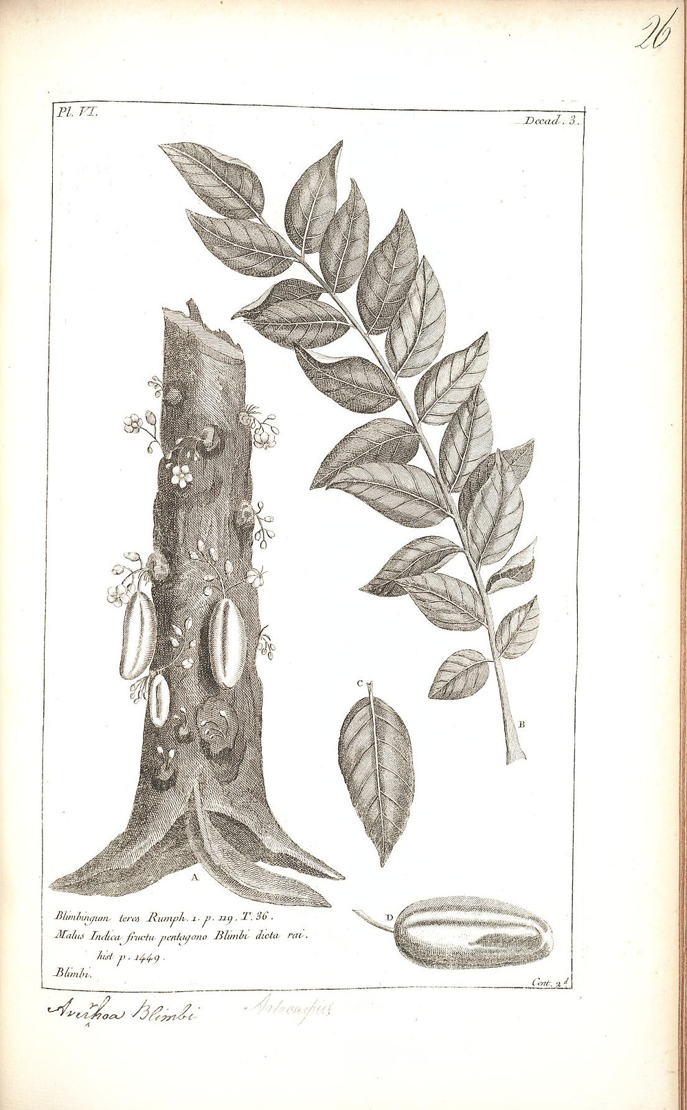 Histoire Universelle, Vol. 2, Chap 3, Paris: Brunet,1775-1778