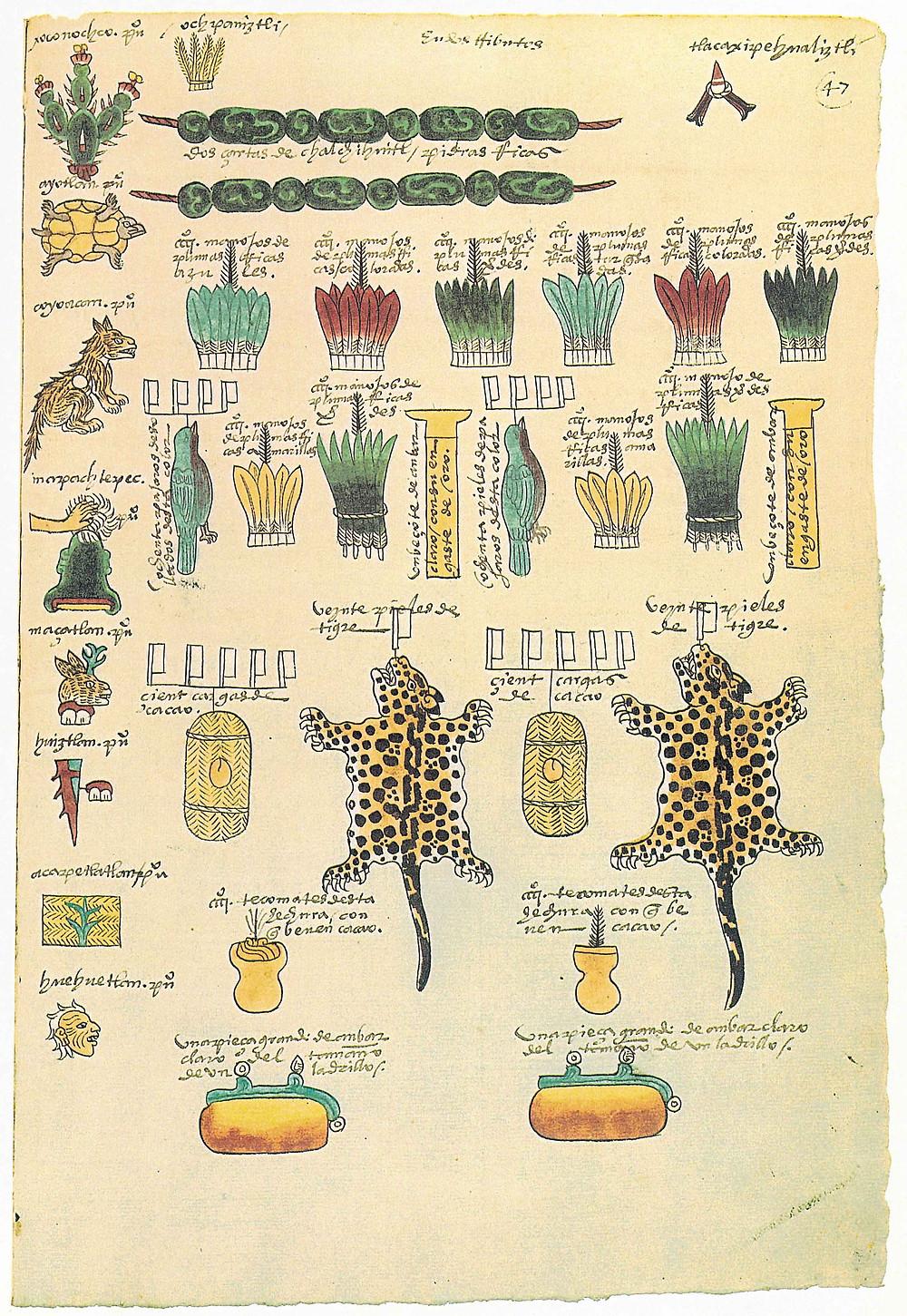 Codex Mendoza, Folio 47, recto