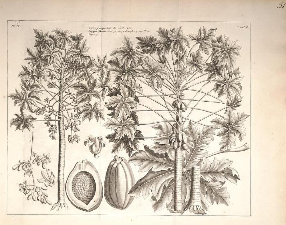 Histoire Universelle, Vol. 1, Chap 6, Paris: Brunet,1775-1778